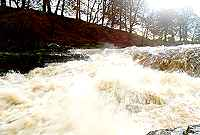 River Ure - Aysgarth Falls
